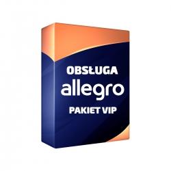 Obsługa allegro pakiet VIP - 100 aukcji