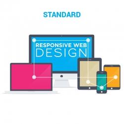 Indywidualny sklep internetowy Standard